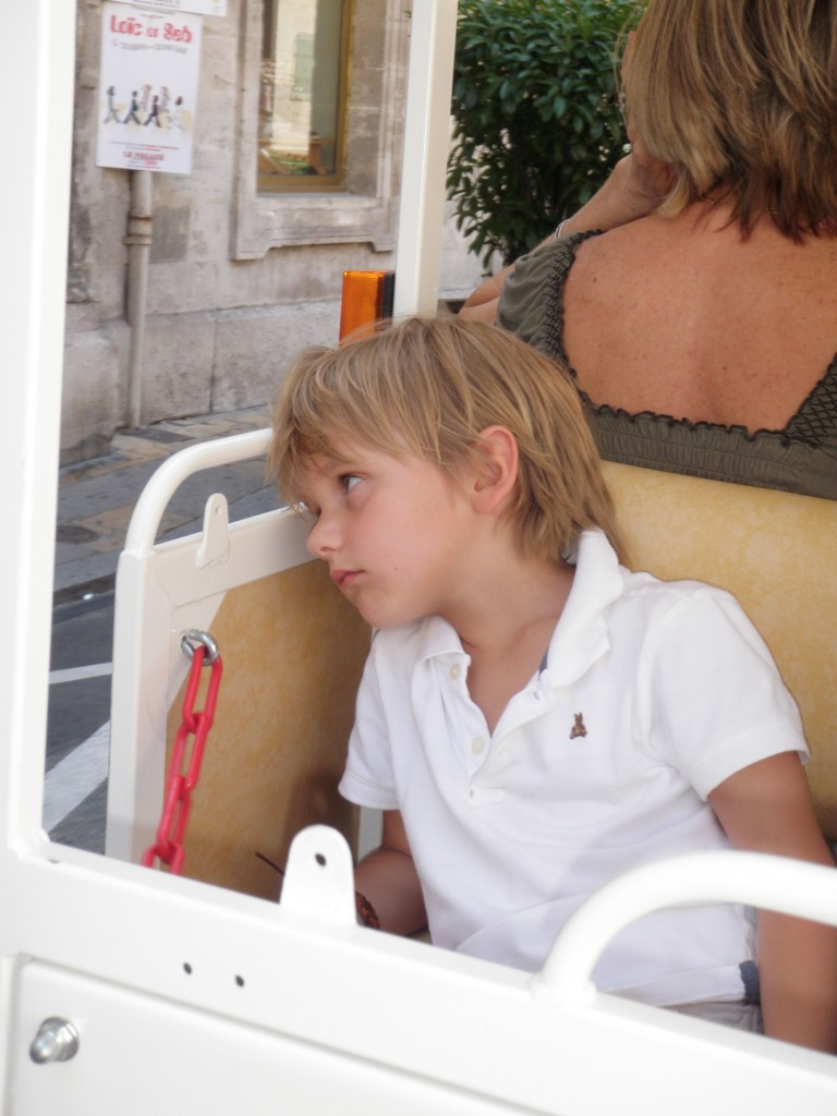 Avignon France Hosted Villas Luxury Travel Mom