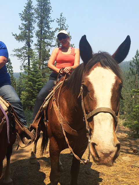 horse back riding alpine meadows lake tahoe