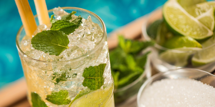 adventures-by-disney-central-and-south-america-costa-rica-day-06-mojito-making